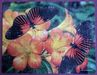 Butterflies 100 pieces