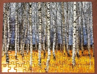 Aspens - 100 pieces
