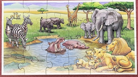 African Animals - Patch Products - 24 pieces
