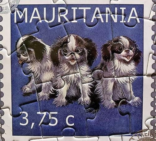 Dog Stamps 1
