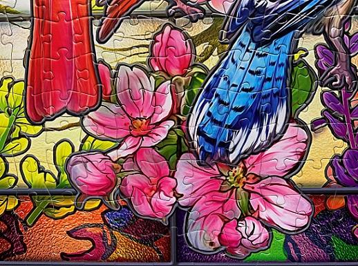 Songbirds 3