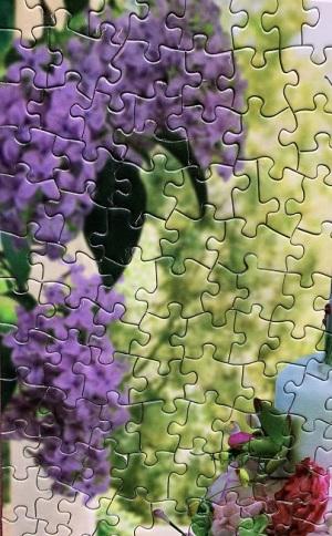 Actual Puzzle