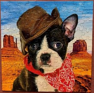 Boston Cowboy