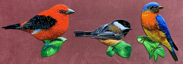 Birds 3-1