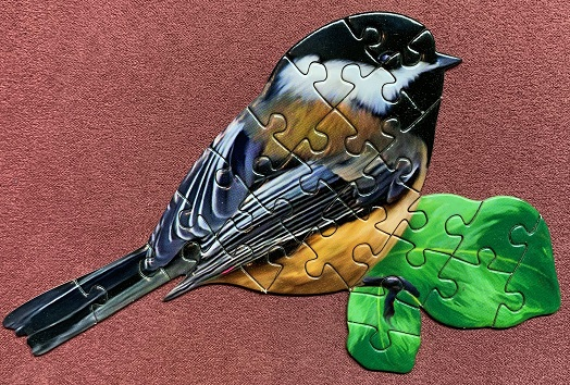 Birds 3-3