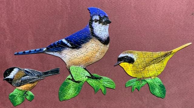 Birds 5-1